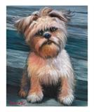 View a Collection of Brussels Griffon Prints - Click Here