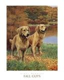 View a Collection of Golden Retriever Prints - Click Here