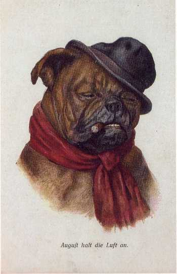 View a Collection of German Bulldog Prints - Click Here