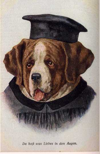 Saint Bernard Print - German