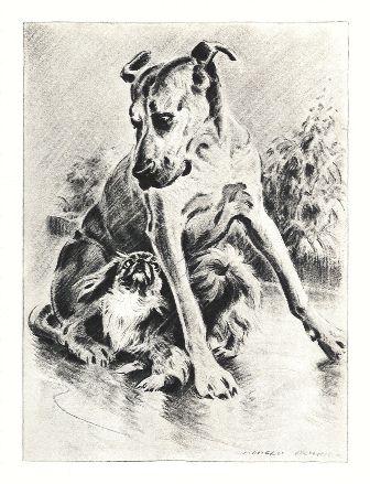 Great Dane Print - Morgan Dennis