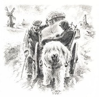 Old English Sheepdog Print - Morgan Dennis