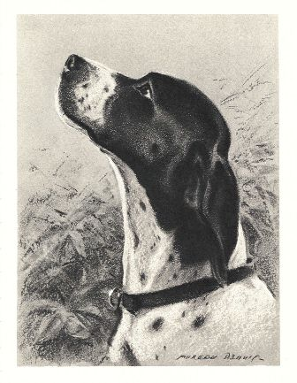 Pointer Print - Morgan Dennis