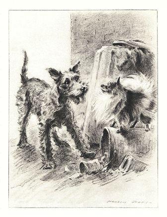 Pomeranian Print - Morgan Dennis