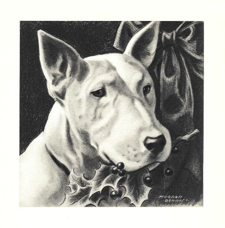 Bull Terrier Print - Morgan Dennis