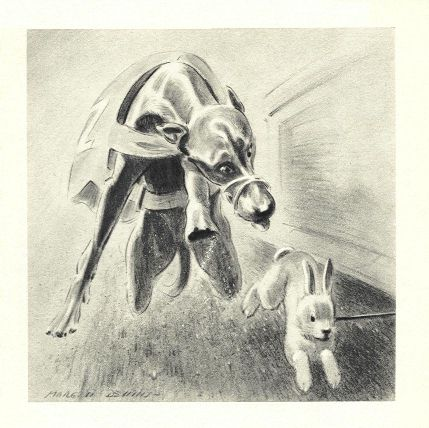 Greyhound Print - Morgan Dennis