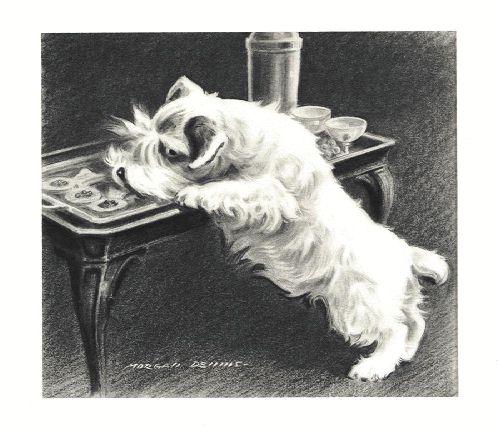 Sealyham Terrier Print - Morgan Dennis