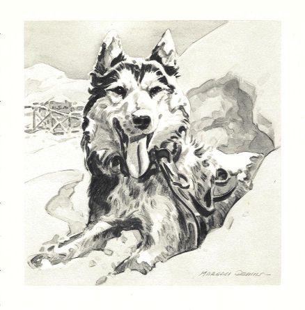 Siberian Husky Print - Morgan Dennis