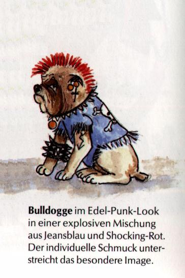 English Bulldog Print - German
