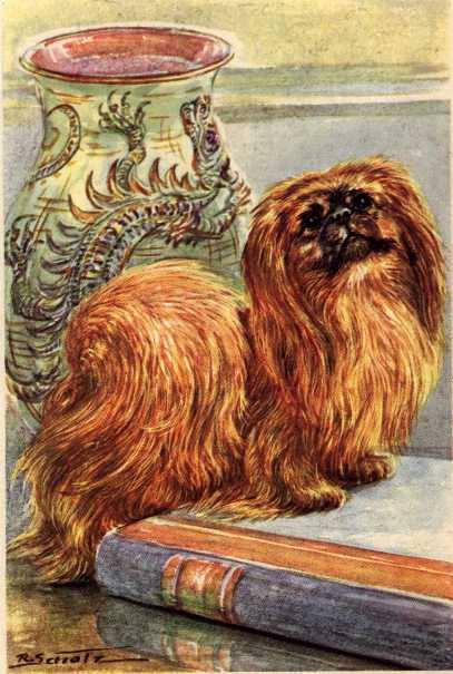Pekingese Print - German